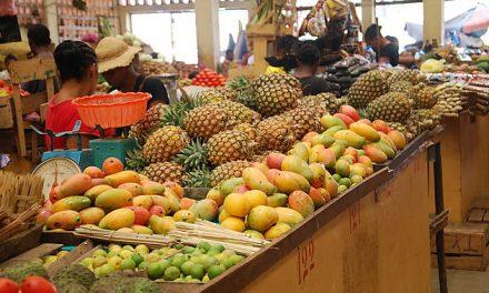 Import des aliments de Madagascar pour l'Europe